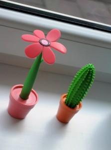pero_kaktus+kvet